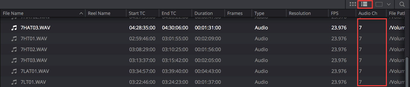 DaVinci Resolve List view