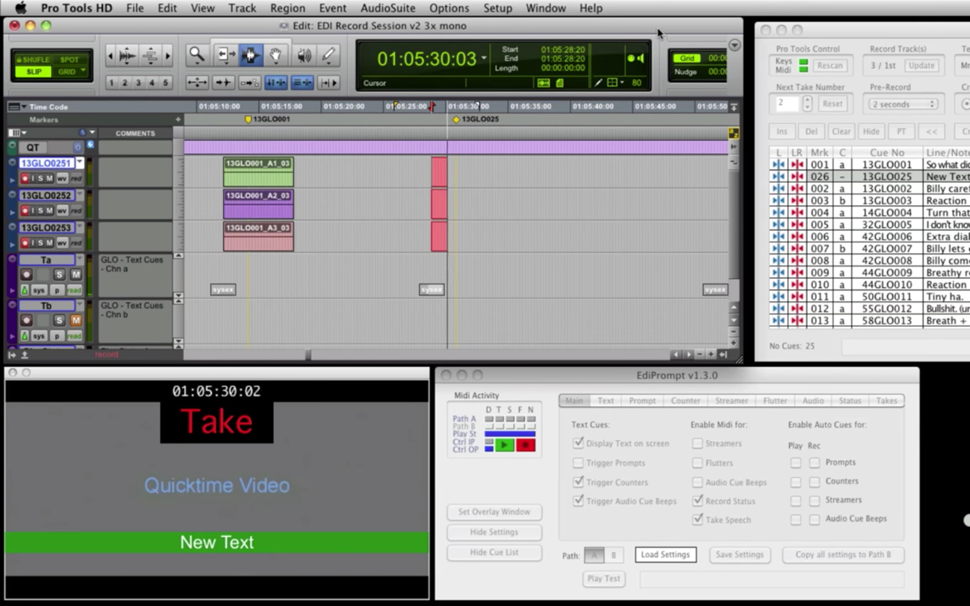 A Pro Tools session with ADR cues